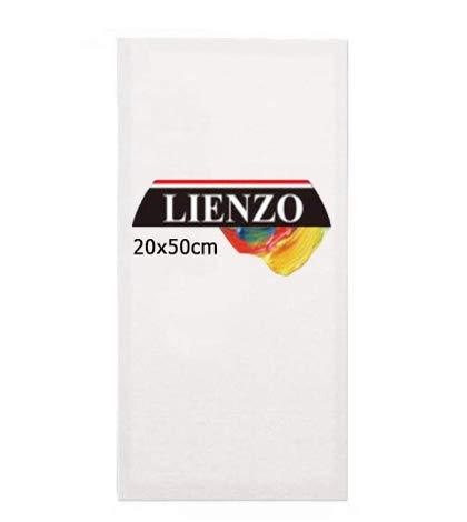 Lienzos para pintar | Apto óleo, acrílico o técnica mixta Pre-estirado 100% algodón 380grs/ Perfil 35mm (20 x 50 cm)
