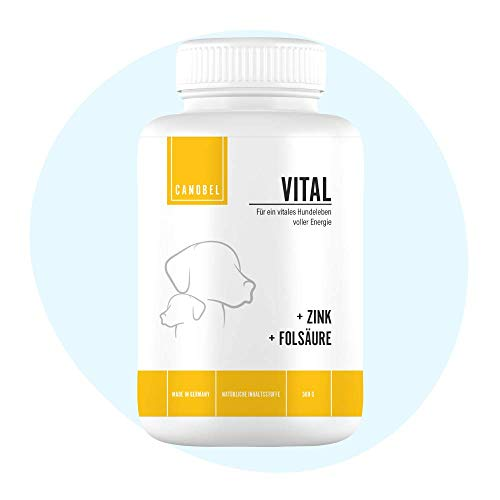 Canobel VITAL Vitamin B Komplex Leckerli für Hunde I Vitamintabletten, Vitaminpaste I Immunsystem + Nervenfunktionen I Nahrungsergänzung Welpen, Adult & Senior Folsäure, Zink & Biotin