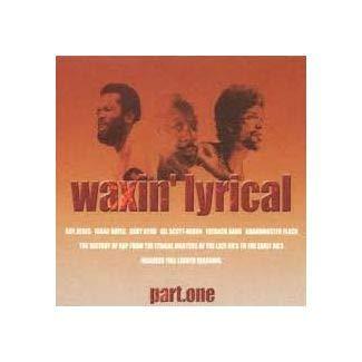 Waxing Lyrical [Vinyl LP]