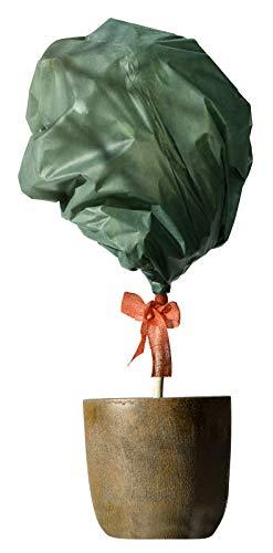 Windhager Wintervlies, Thermovlies, Kälteschutz, Frostschutz für Pflanzen, Winterschutz, grün, 1,6 x 10 m, 30g/m², 07919