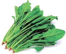 30 graines / paquet de graines de légumes balcon bonsaï semences d'épinards Big feuilles d'épinards