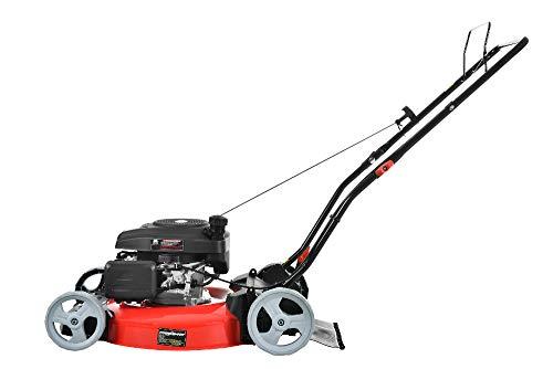 5. PowerSmart DB2321CR Gas Lawn Mower