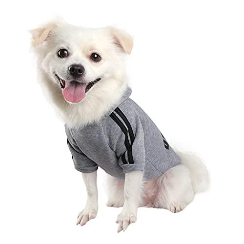 QiCheng&LYS Dog Hoodie,Jersey Perros,Sudadera Perro Ropa ParaCachorros, Sudadera para Chihuahua Cómodo Y Cálido (Gris, X-Small)