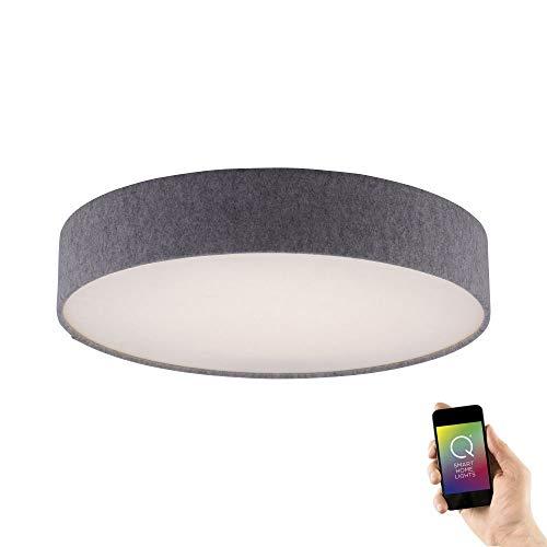 Paul Neuhaus, Q-Kiara, LED Deckenleuchte, Ø58cm, Smart Home, steuerbar via App, kompatibel mit Alexa, dimmbar mit Fernbedienung, Farbtemperatursteuerung