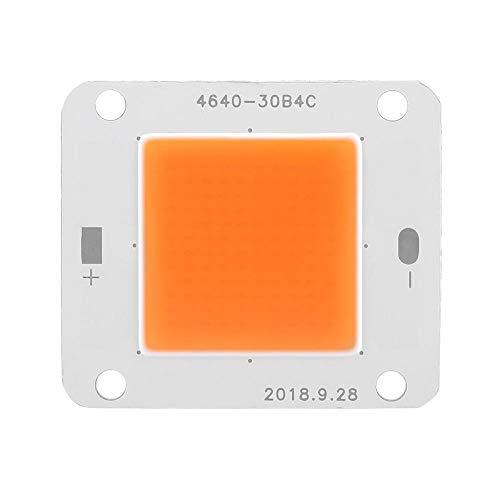Fdit Supraleitende Aluminium DC12V 50W COB LED-Chip Vollspektrum Pflanzenwachstumslampe Lichtquelle Geeignet für Pflanzenlichtlampen Pflanzenscheinwerfer Pflanzenlichter