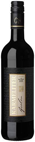 Württemberger Wein Fleiner Acolon QW Holzfass
