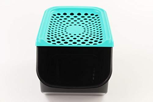 TUPPERWARE Organizador Modular de 5,5L para cebollas y ajos negro/turchese oscuro 38108