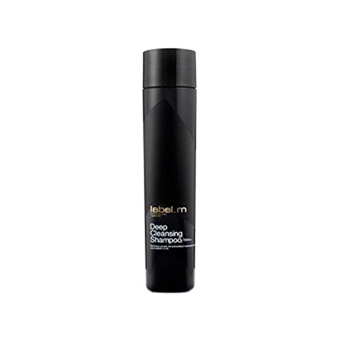 かわいらしいスペアハシー.ディープクレンジングシャンプー(300ミリリットル) x4 - Label.M Deep Cleansing Shampoo (300ml) (Pack of 4) [並行輸入品]