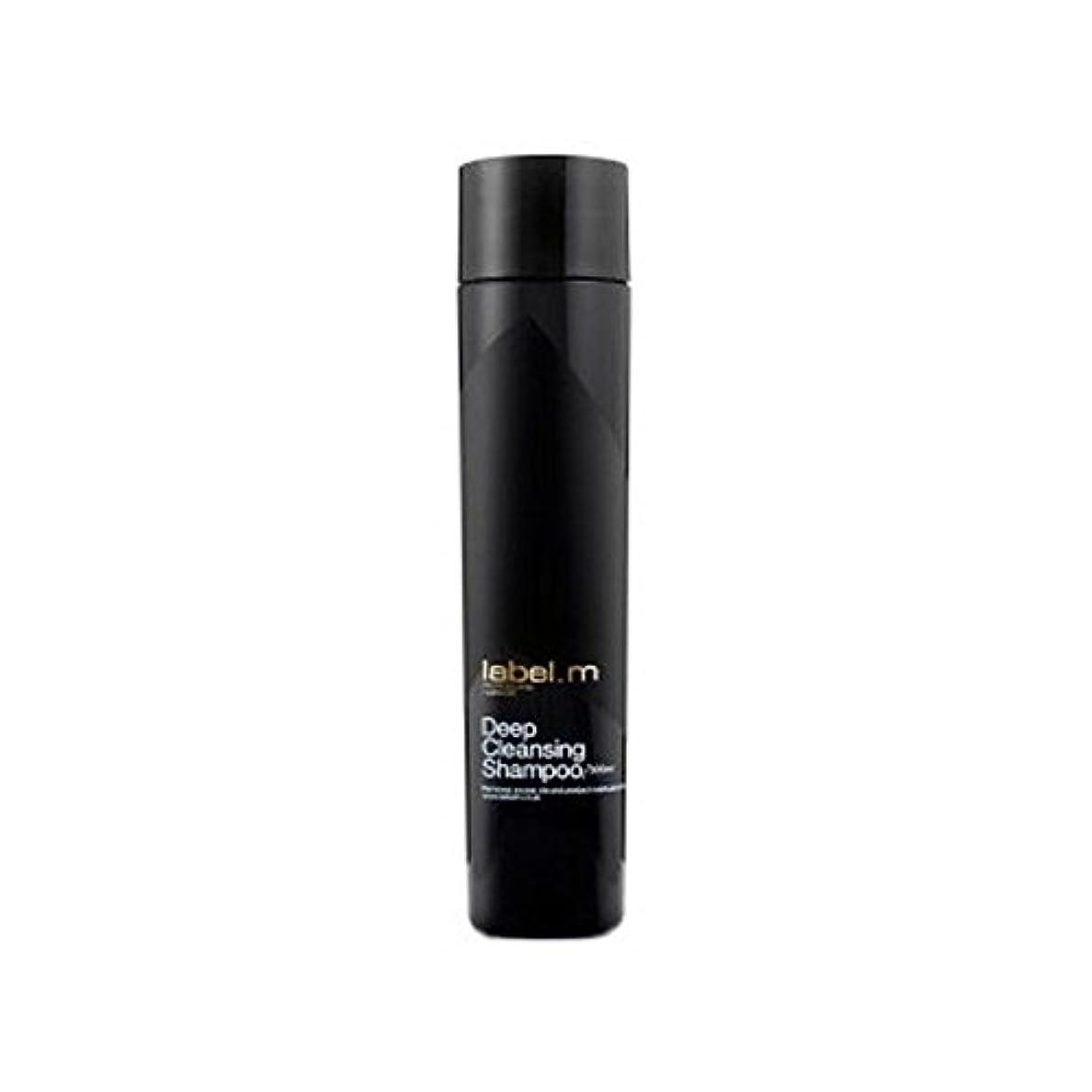 飼いならす問い合わせるヒープ.ディープクレンジングシャンプー(300ミリリットル) x4 - Label.M Deep Cleansing Shampoo (300ml) (Pack of 4) [並行輸入品]
