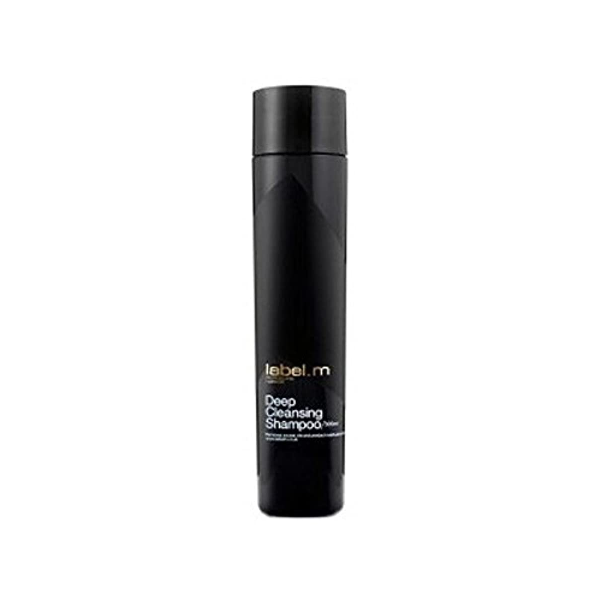 夕方漏れお誕生日.ディープクレンジングシャンプー(300ミリリットル) x4 - Label.M Deep Cleansing Shampoo (300ml) (Pack of 4) [並行輸入品]