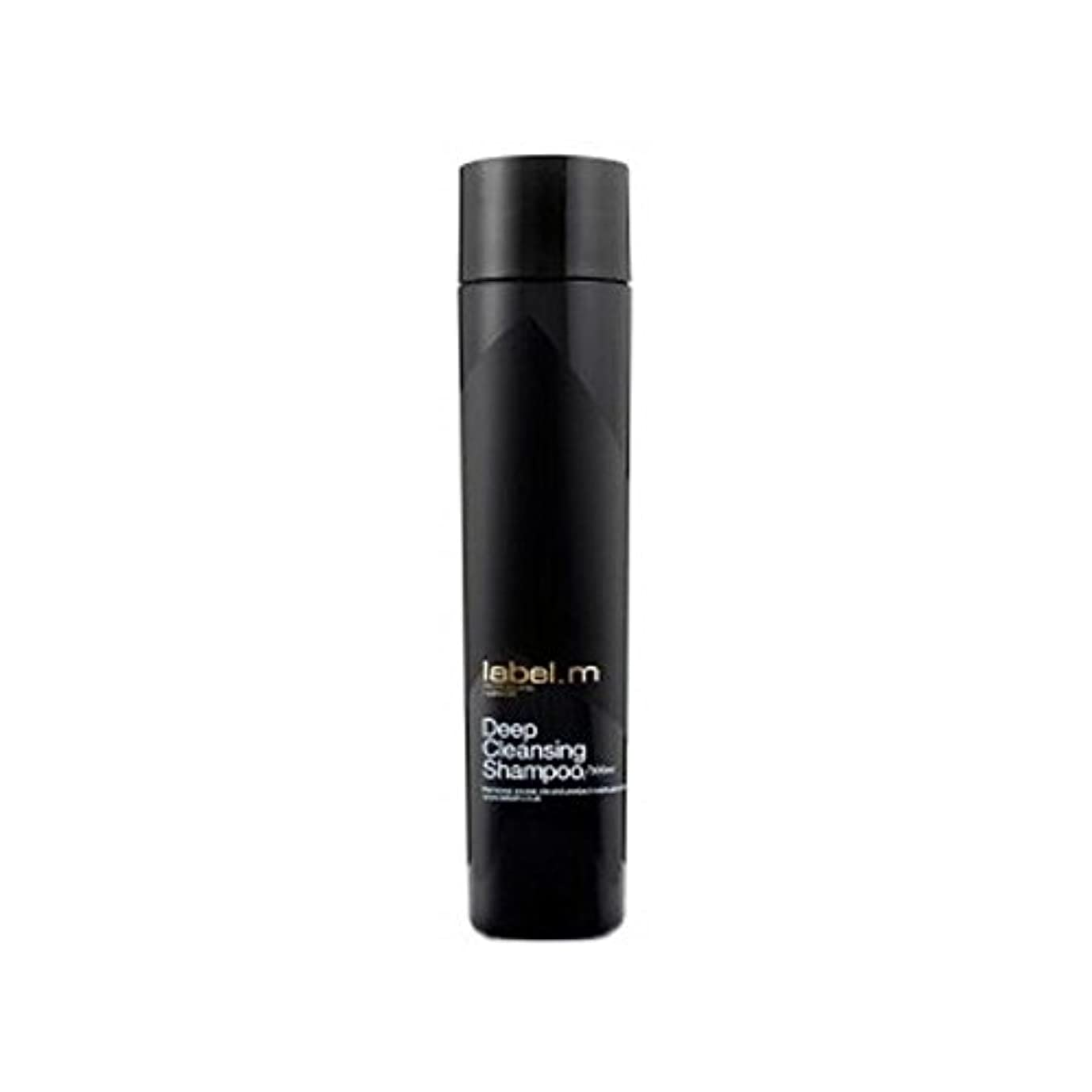 鬼ごっこオフェンス取るに足らない.ディープクレンジングシャンプー(300ミリリットル) x4 - Label.M Deep Cleansing Shampoo (300ml) (Pack of 4) [並行輸入品]
