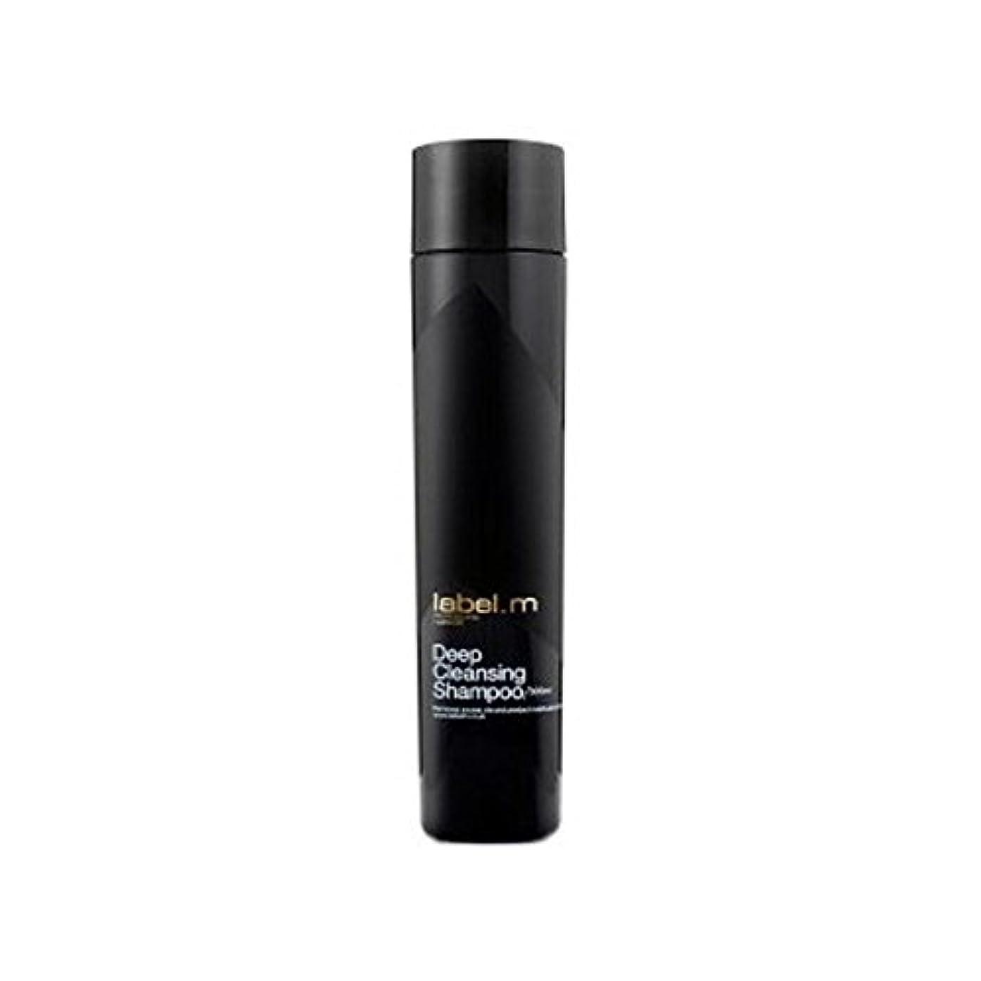 意識真っ逆さま推進力Label.M Deep Cleansing Shampoo (300ml) (Pack of 6) - .ディープクレンジングシャンプー(300ミリリットル) x6 [並行輸入品]
