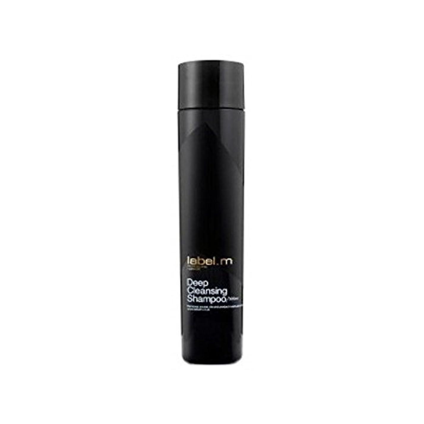 私のダーリン優勢Label.M Deep Cleansing Shampoo (300ml) (Pack of 6) - .ディープクレンジングシャンプー(300ミリリットル) x6 [並行輸入品]