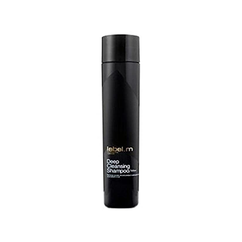 フライトパーティー注釈.ディープクレンジングシャンプー(300ミリリットル) x4 - Label.M Deep Cleansing Shampoo (300ml) (Pack of 4) [並行輸入品]