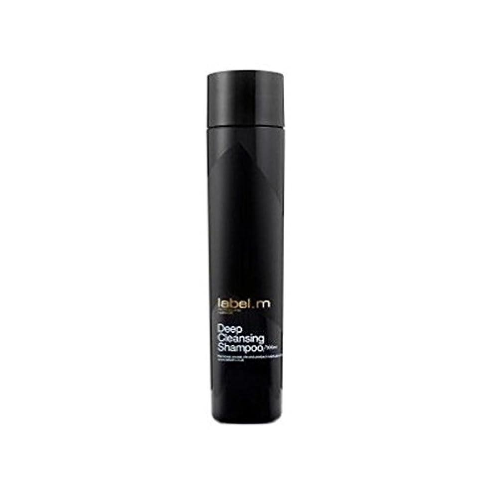 クラス類推超高層ビルLabel.M Deep Cleansing Shampoo (300ml) (Pack of 6) - .ディープクレンジングシャンプー(300ミリリットル) x6 [並行輸入品]