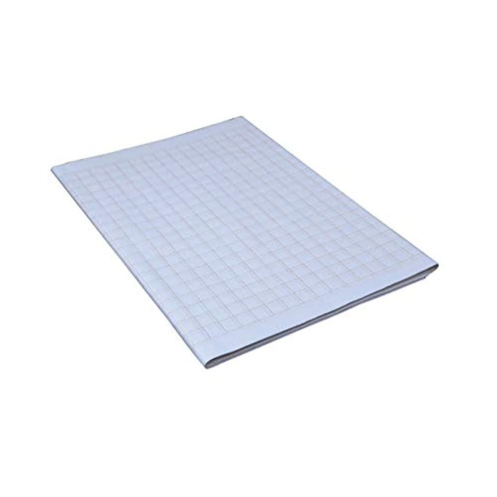 Tianjintang Chinese Calligraphy Xuan Paper with Grids for Learner (34cmx69cm, Grid Size:1.5cm)