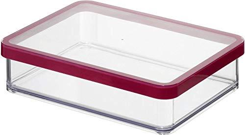 Rotho Loft rechteckige Vorratsdose 1l mit Deckel und Dichtung, Kunststoff (SAN) BPA-frei, transparent/rot, 1l (20,0 x 15,0 x 4,8 cm)