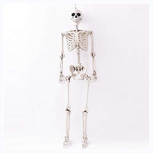 JUJIU Bewegliches Skelett, Halloween-Dekor 62 Zoll hoch, wetterfestes Ganzkörperskelett mit beweglichem Material - Perfekt für den Innen- und Außenbereich