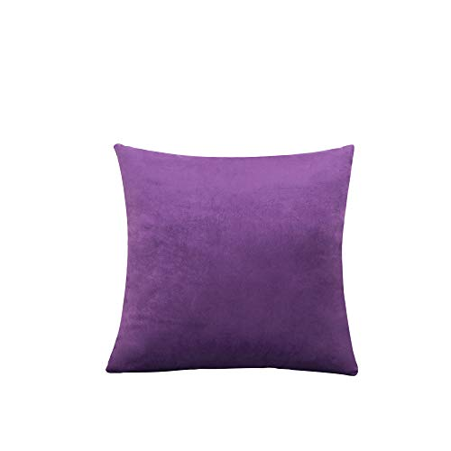"""visionreast Velvet Square soft Cushion Covers Throw Pillow Cover Pillowcase Decorative with Invisible Zipper Pillowcases for Sofa Car Livingroom Bedroom 20""""x20"""" 2Piece Purple"""