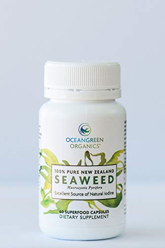 KELP Seaweed Supplements | NEW ZEALAND | Premium 100% Pure ORGANIC | Immune & Gut Health, Thyroid Support, Greater Energy & Weight Loss, Vegan Friendly | 60 Vege Caps | Traceable | Oceangreen Organics