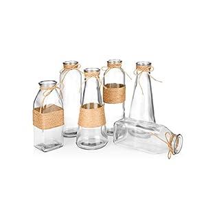 Silk Flower Arrangements Glass Vases in Differing Unique Shapes Creative Rope Design - Set of 6