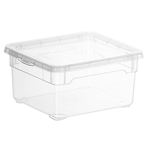 Rotho 6661300096WS 10-er Set Clear Box Small 2 l mit Deckel AppMyBox