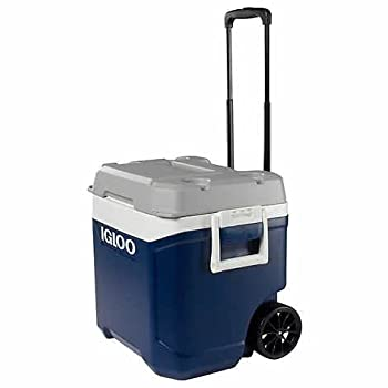 Best igloo transformer 60 qt cooler Reviews