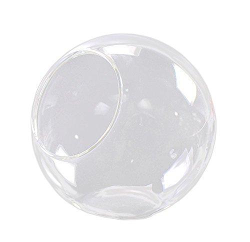 Ruikey Micro-Paisaje de Mesa pequeño jarrón de Cristal de la chuchería Transparente Multi-Carnes Plantas Maceta para la Oficina de decoración de Bricolaje Bonsai candelabro