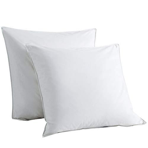 Downcy - Almohadas de pluma y plumón de ganso, funda de algodón, 80 x 80 cm (paquete de 2)