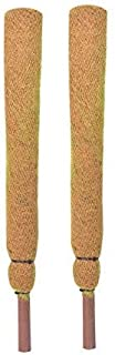 COIR GARDEN Coir Moss Stick For Plant Support, 91cm, 2 Pieces