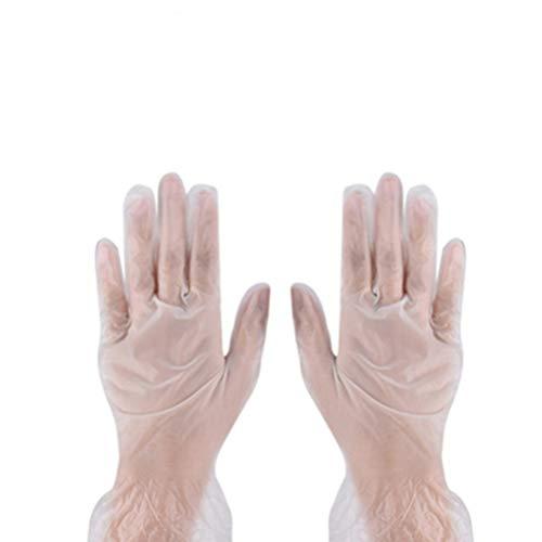 Artibest - Guantes de PVC desechables (100 unidades, sin polvo, sin látex, talla M), color blanco, 20X9X1cm, blanco, 1