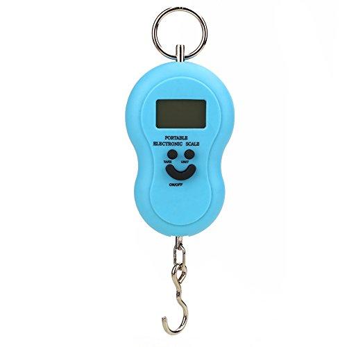 Beautyrain Balance électronique numérique Portable 40 kg Roulement Hanging bagages pesant Crochet numérique Échelle Mini Pêche LCD Pondération d'affichage