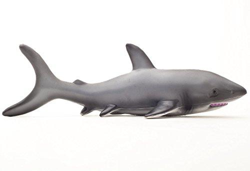 Verde gomma giocattoli marine in lattice di gomma naturale Bathtime Toy Shark by