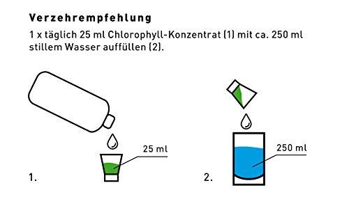 Liquid Chlorophyll aus Alfalfa mit Minzgeschmack- hochdosierter Monatsvorrat -1000ml – Basisch – Flüssiges Chlorophyll – Konzentrat – Made in Germany - 4