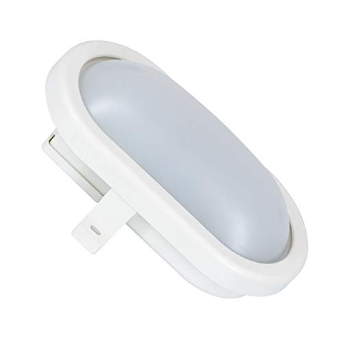 LEDKIA LIGHTING Plafón LED Oval New 12W White Blanco Frío 6500K