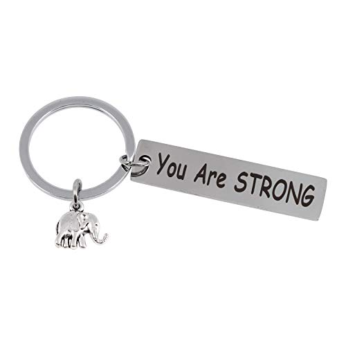 2-Pack Elephant Keychain - You Are Strong - Elephant Gifts for Women, Student, Friends & Elephant Lovers - Great Package
