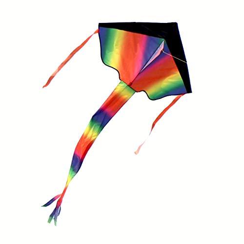 ZWS Kites Rainbow Kite Long Tail Outdoor Kite Children Flying Toy Children Stunt Kite Outdoor Best Choice Outdoor Entertainment (Color : 300meter line, Size : S)