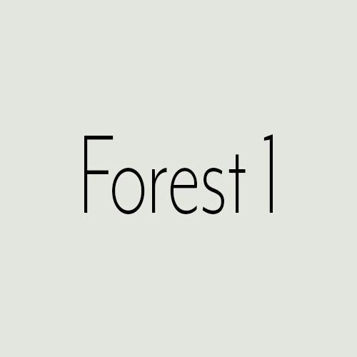 Wandfarbe Grün Capital Paint Latex Bunt Innenfarbe Strapazierfähig Forest 1 2,5 Liter