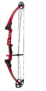 Genesis Mini Compound Bow Review