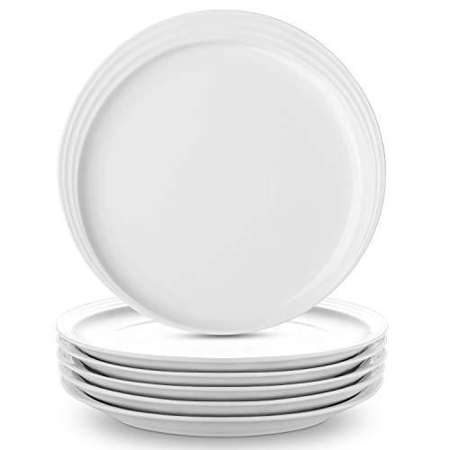 DOWAN Dinner Plates White Salad Plates Set of 6, Procelain Round Dessert Serving Dishes 10 inch