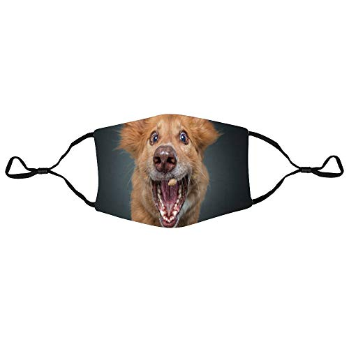 DONL9BAUER Dog Catching Treats 3-Layer Cotton Mouth Cover Funny Animal Reusable Washable Fashion Dust Mouth Protection with Adjustable Ear Loops Warm Unisex