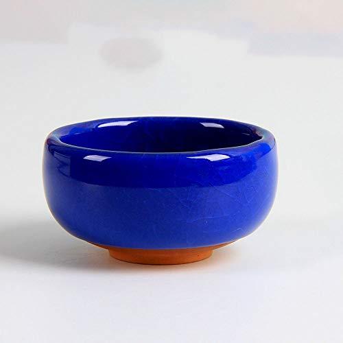 XHZJ Pot de Fleur Succulent en céramique de Table d'intérieur glacé fissuré par Glace, Pot de Fleur en céramique, Petite Plante de Sable Pourpre en céramique plantant des Pots de Fleur, décoration de