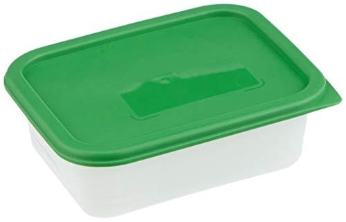 Rotho Domino 4er Set Gefrierdosen 0,5l mit Deckel, Kunststoff (PP) BPA-frei, grün/transparent, 4 x 0,5l (15,7 x 11,8 x 10,5 cm)