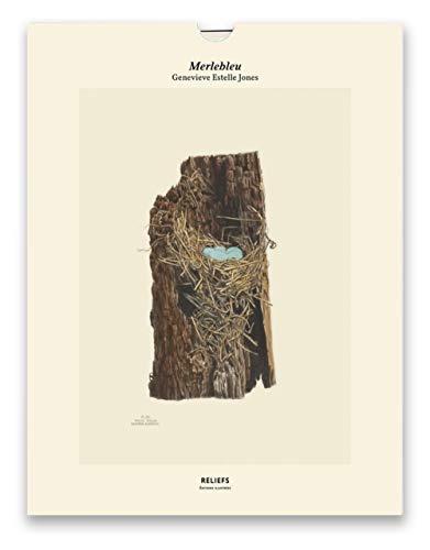 Merlebleu, Illustrations of the Nest and Eggs of Birds of Ohio (1879-1886) : Une illustration imprimée sur un papier de création avec un livret autour de l'oeuvre