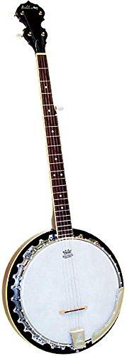 Ashbury AB-355 - Banjo (5 cuerdas)