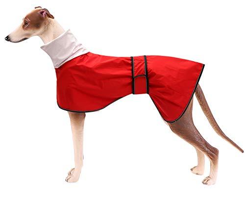MOREZI Chubasquero para Perro, Cortaviento e Impermeable, Cuello Alto abatible, con Orificio para Cuerda de Seguridad y Hebilla de Velcro, Apto para Perros de tamaño Mediano-Rojo-XL