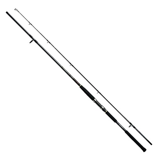 ダイワ(DAIWA) ショアジギングロッド スピニング ジグキャスター 96H ショアジギング 釣り竿