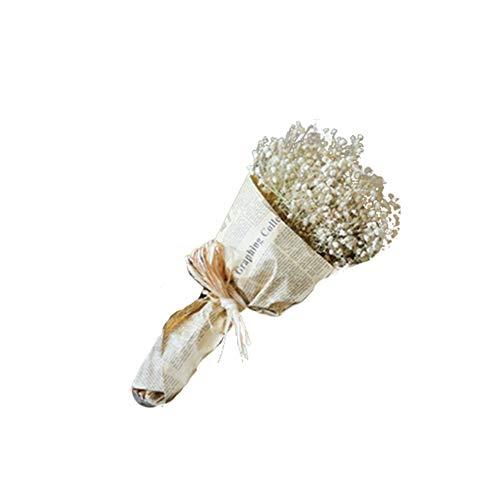 Fablcrew Blumenstrauß aus getrocknetem Natur, für Blumendeko, Blumenstrauß für Hochzeit, Party, getrocknete Blume, Gypsophila (weiß)