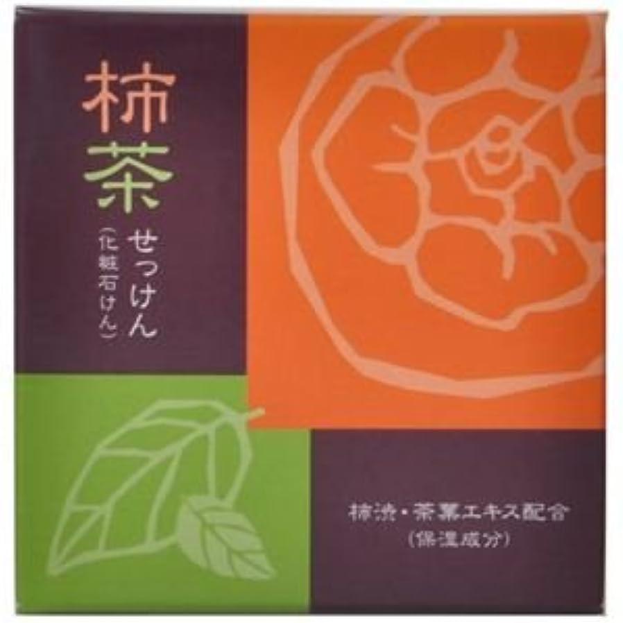モチーフ全体にサイレン柿茶石けん 80g 【3セット】