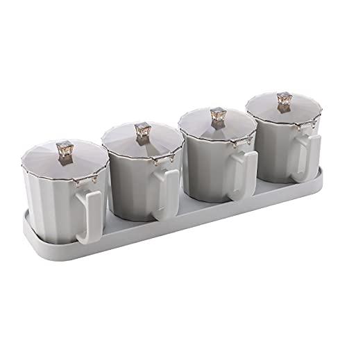TAMRG Juego de 4 botes de especias de cocina, con base, tarro de especias con cucharas, caja para especias, resistente al agua y a la humedad, con tapa para especias, sal, azúcar (gris)